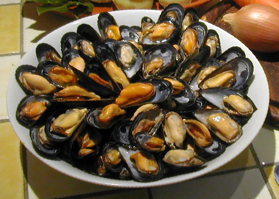 Mussels - Cleaning and Purging