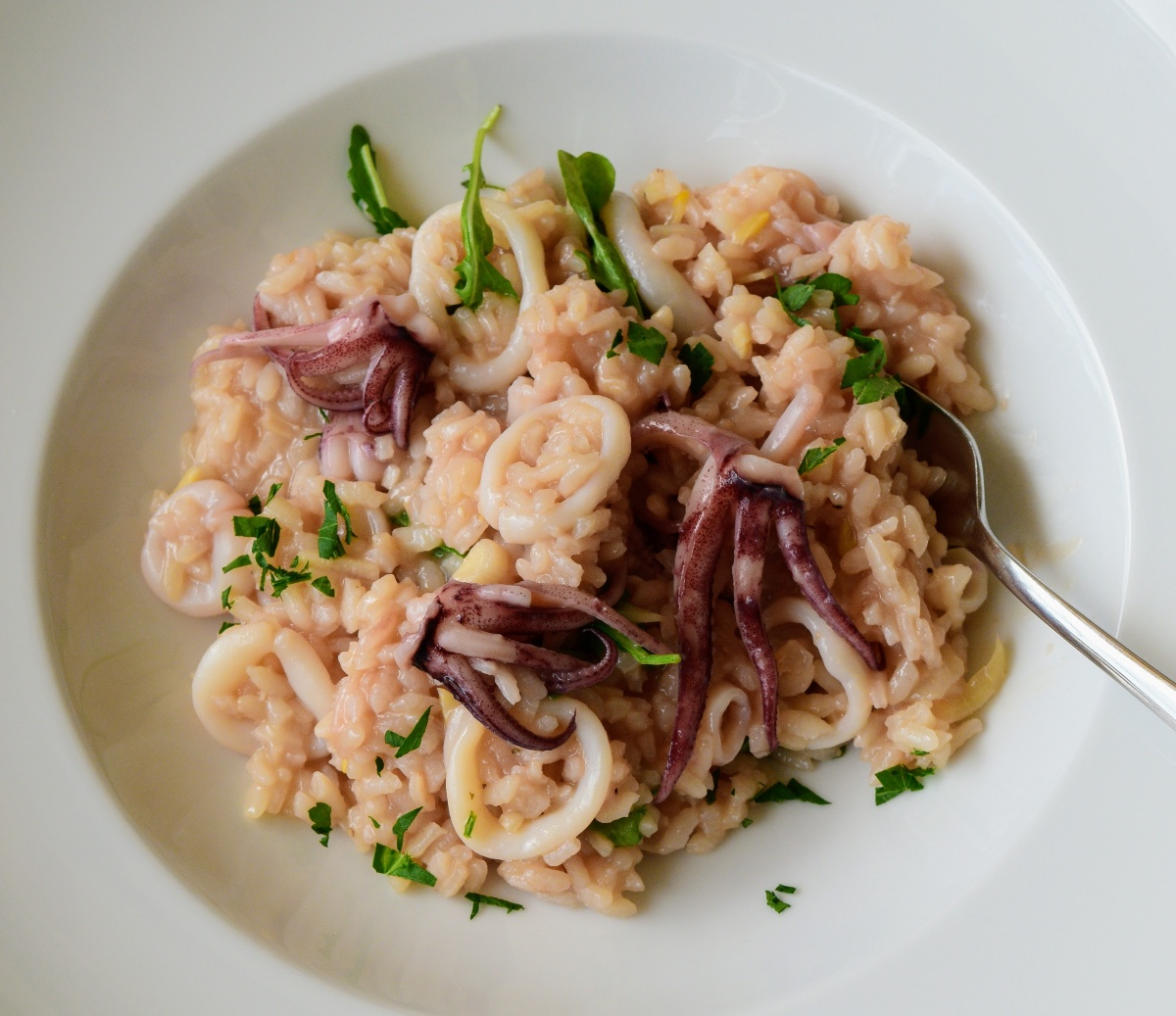 Squid and Arugula Risotto Recipe