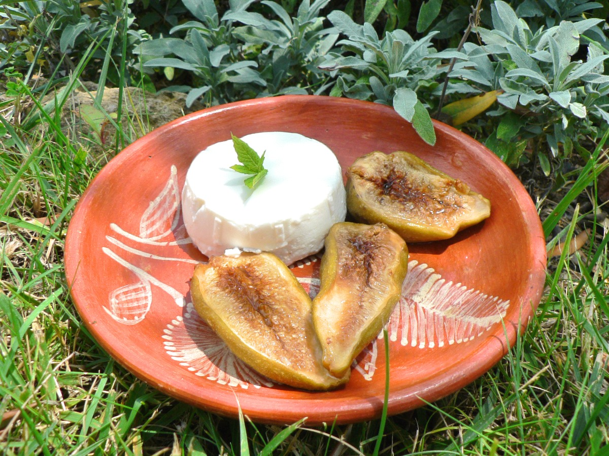 Baked Figs with Greek Yogurt Recipe